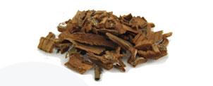 Agoniada (Plumeria lancifolia) - Matéria Prima