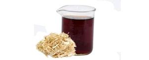 Algodoeiro (Gossypium herbaceum L.) - Produto